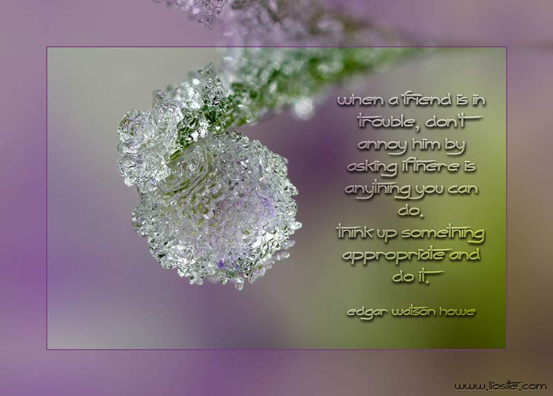 English quotation for inspired mind! On Photos.